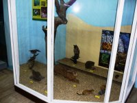 "Exposition ""Bird World of Egerland"""